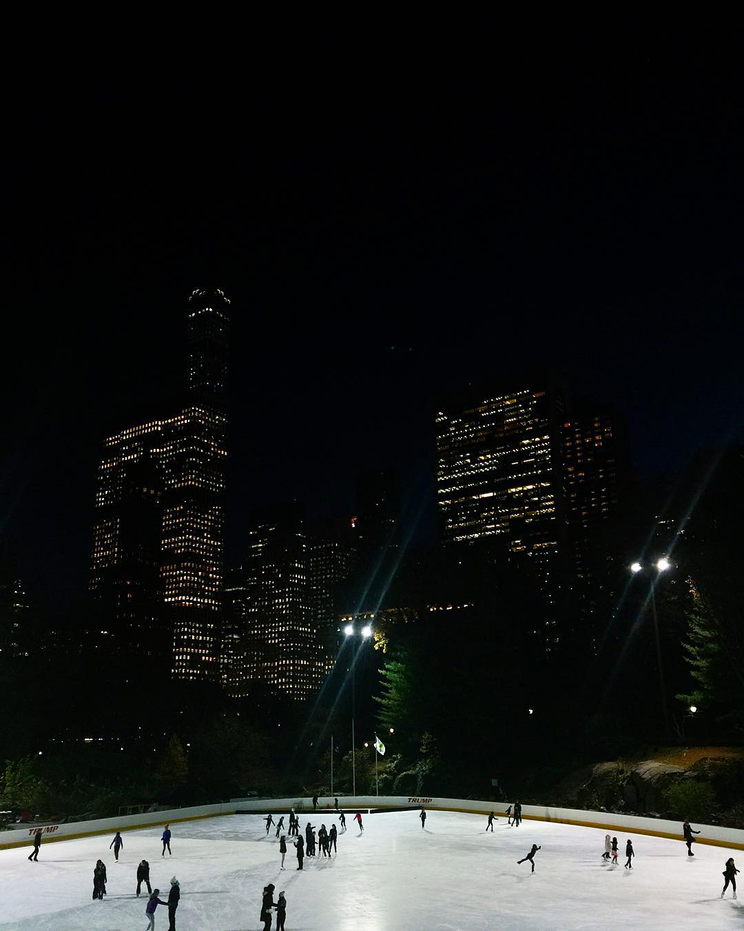 Night centralpark newyork manhattan celinemarks