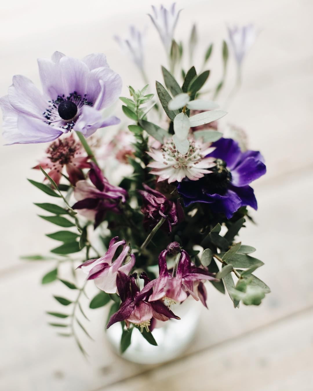 Jolies fleurs achetes hier au march flowers celinemarks