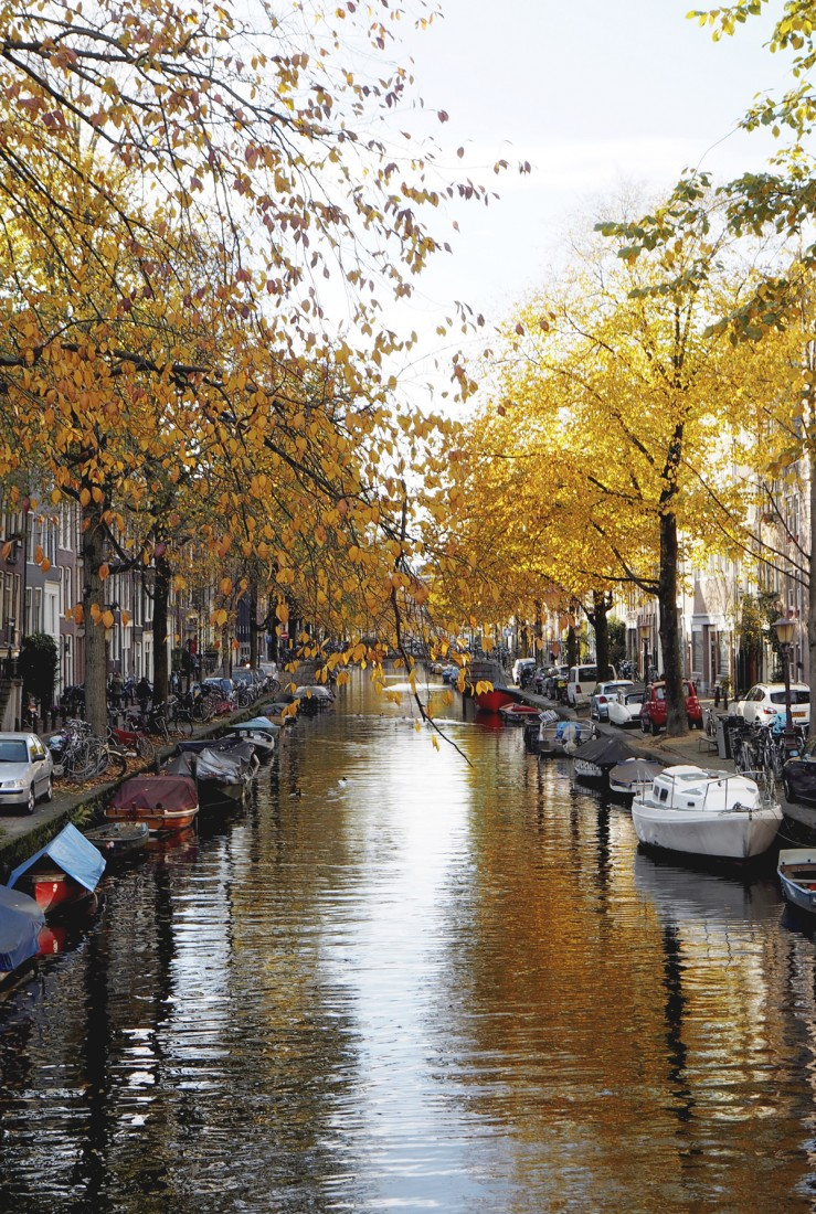 placement_amsterdam1