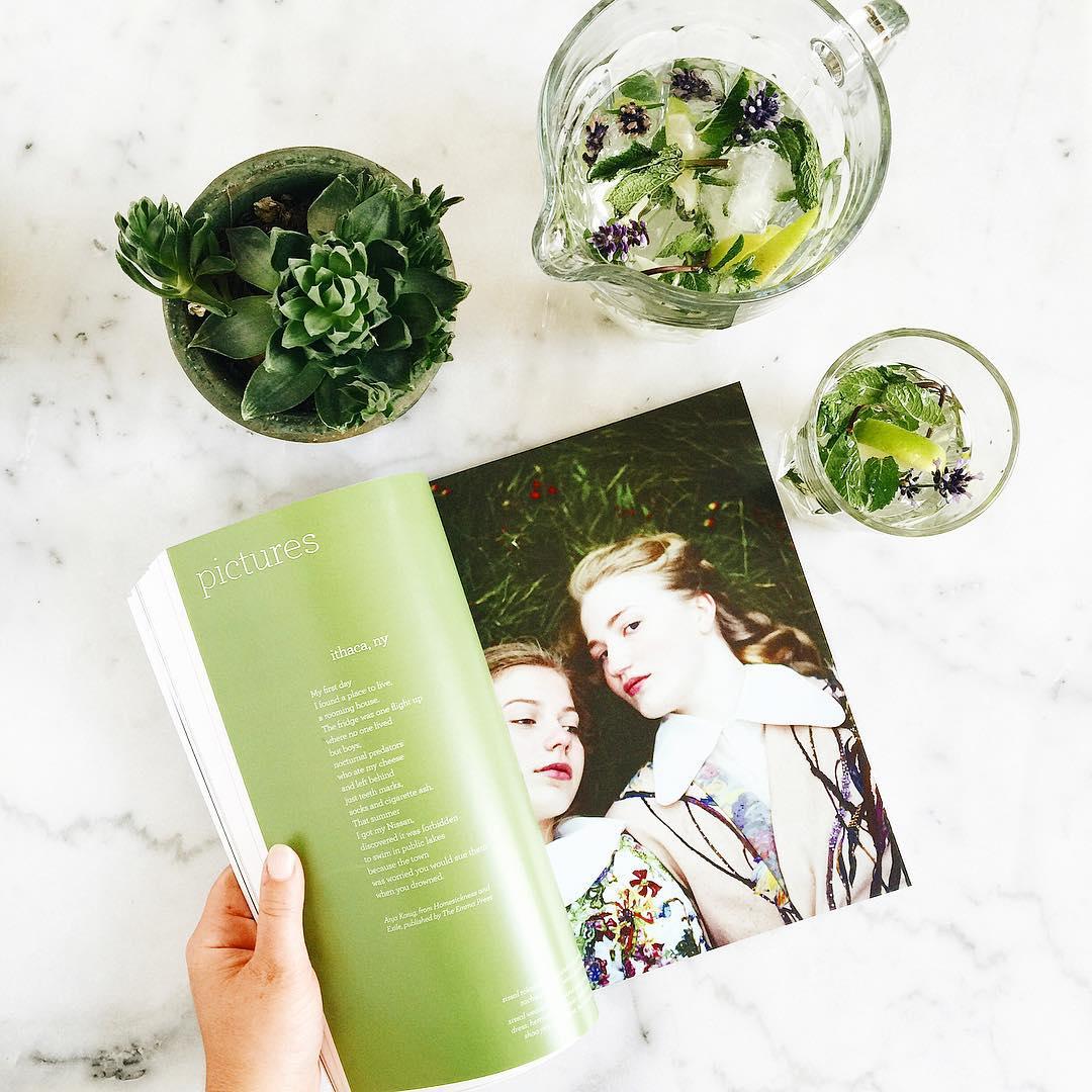 Green Homemade Cocktail  Eau citron vert menthe et lavandehellip