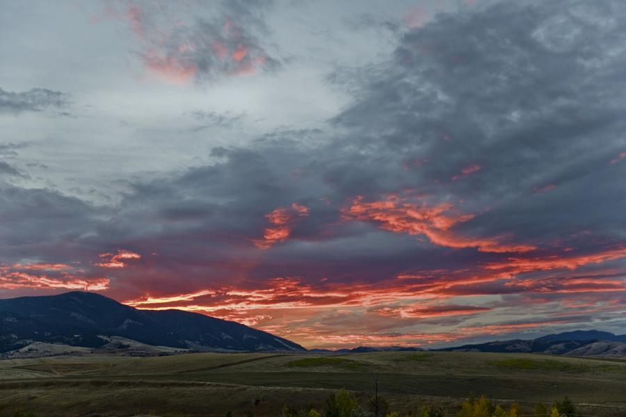 roadtrip_celinemarks_ny_montana2015_184