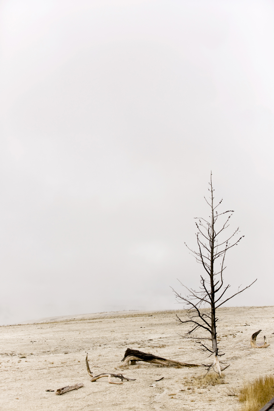 roadtrip_celinemarks_ny_montana2015_209