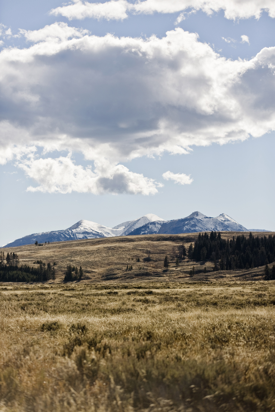 roadtrip_celinemarks_ny_montana2015_217