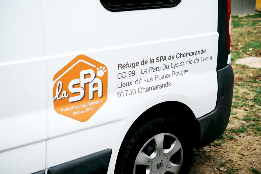 spa_noel_des_animaux_refuge_chamarande_2