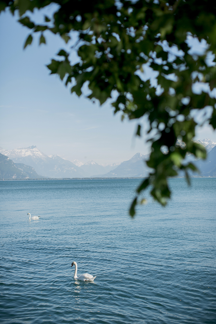 roadtrip_la_suisse_grand_hotel_du_lac_vevey_23