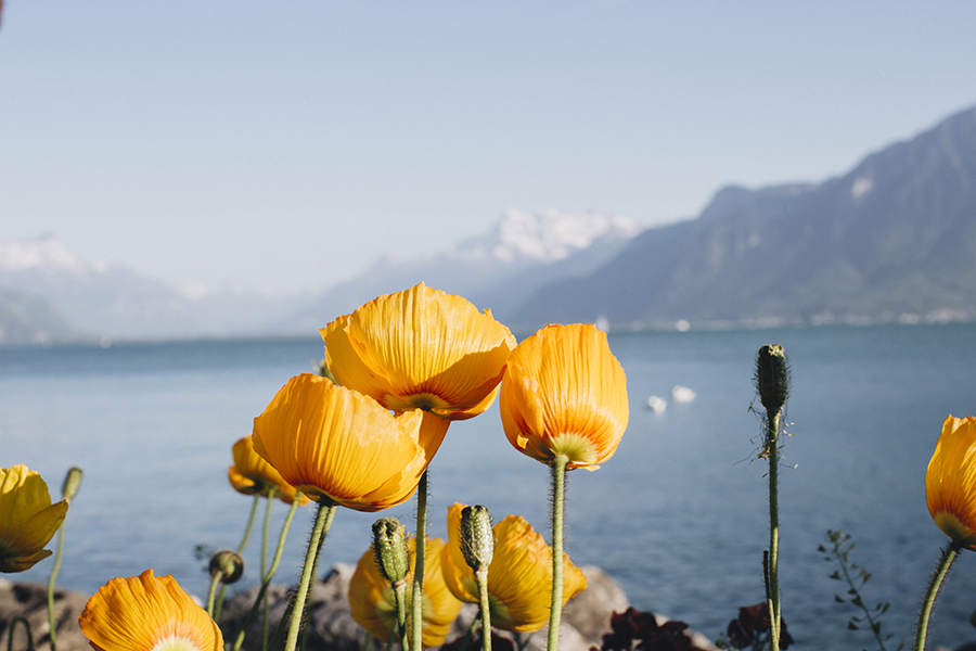 roadtrip_la_suisse_grand_hotel_du_lac_vevey_24