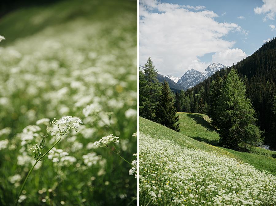 roadtrip_la_suisse_lac_de_caumasee_15