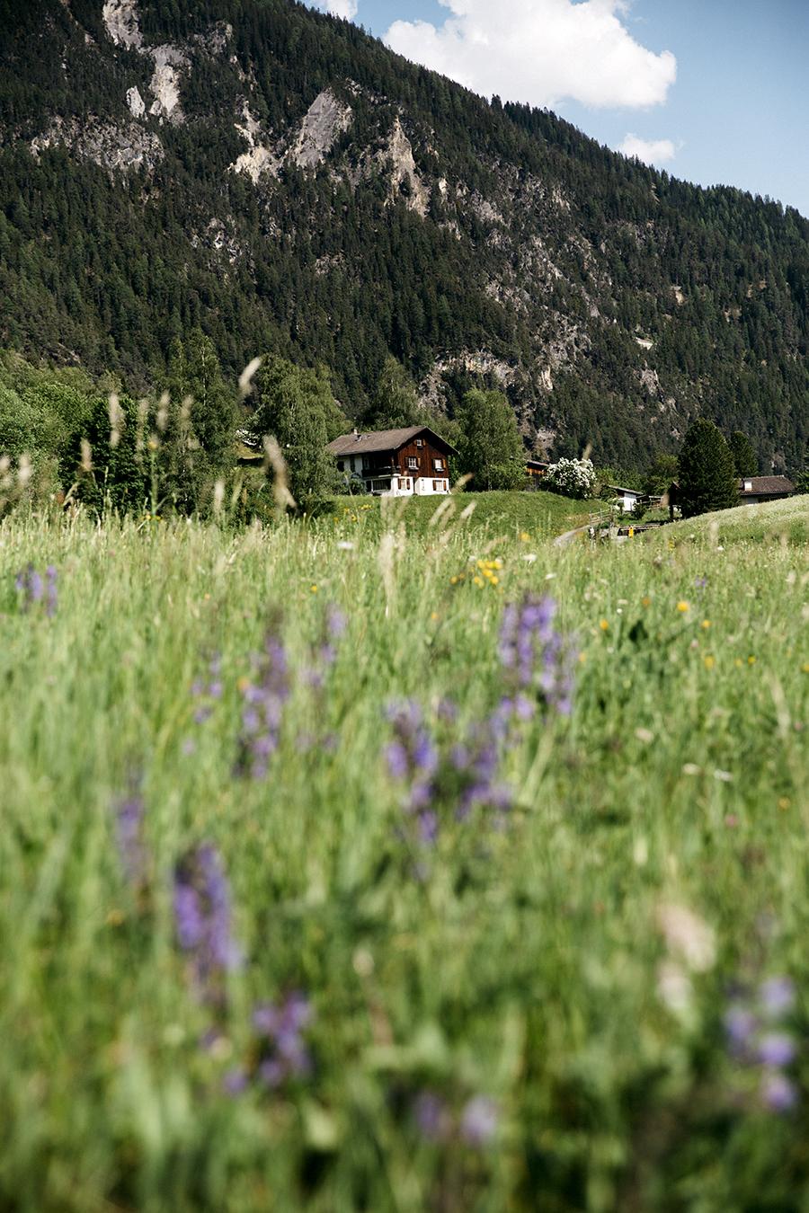 roadtrip_la_suisse_lac_de_caumasee_31