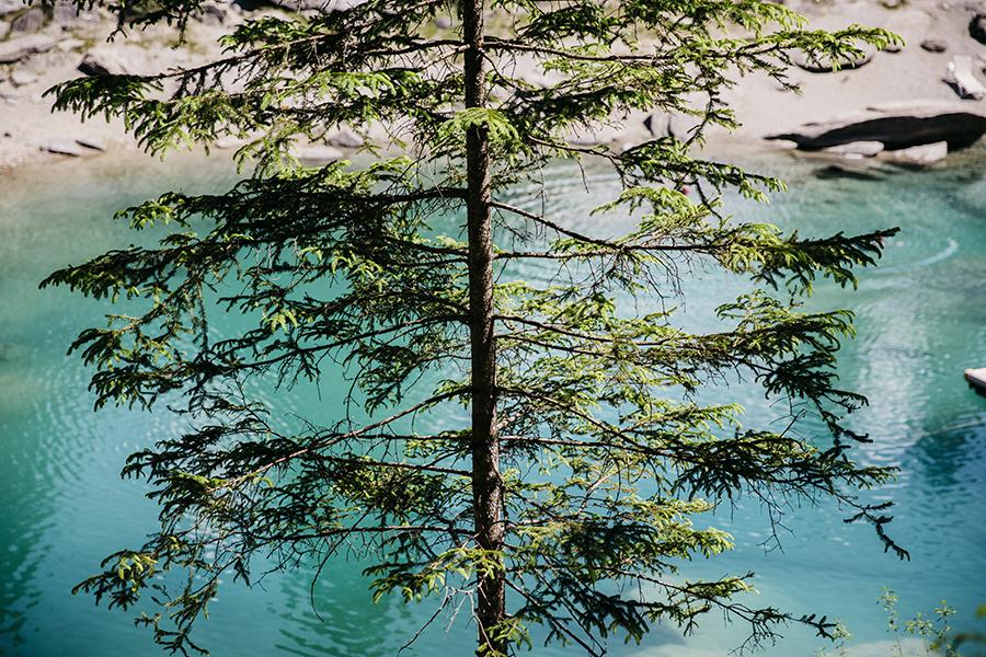 roadtrip_la_suisse_lac_de_caumasee_43