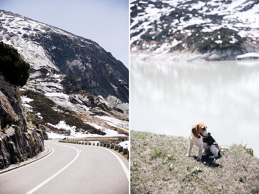 roadtrip_la_suisse_park_veggis_mont_pilatus_col_de_grimsel_56