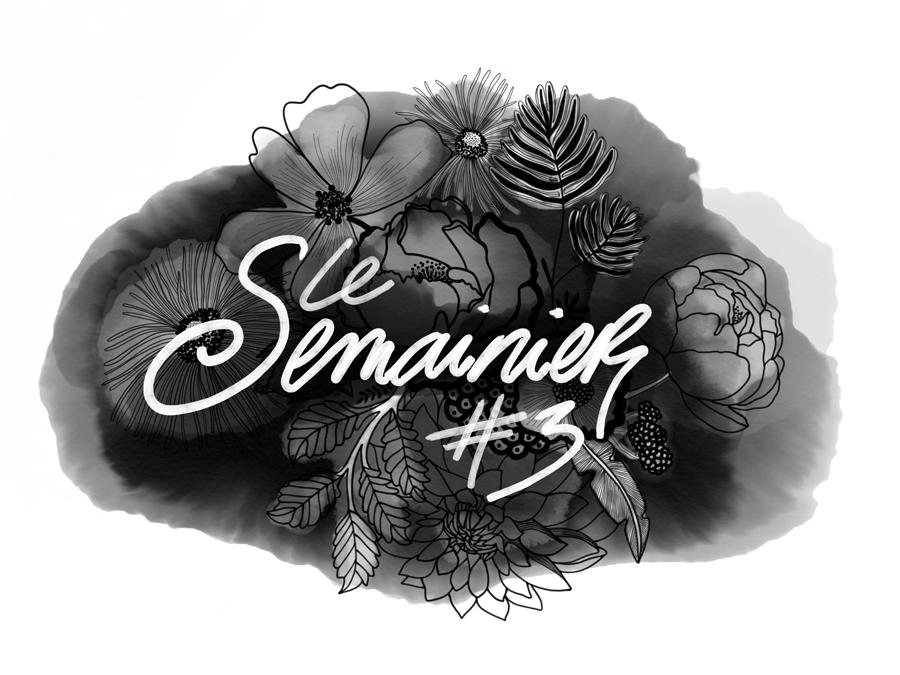 le_semainier#3