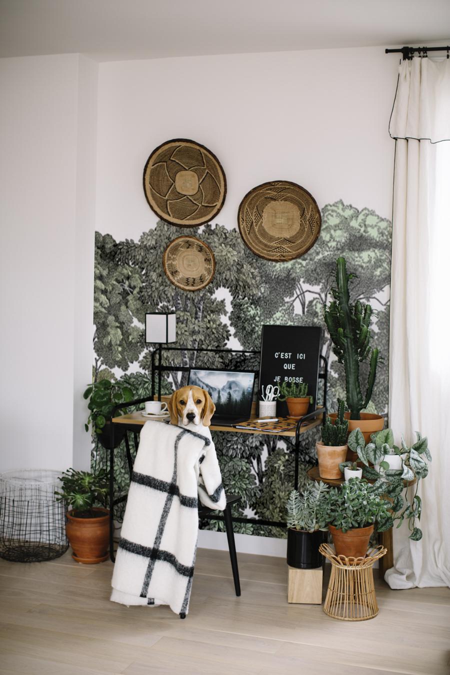 Coin Chambre Dans Petit Salon amÉnager un coin bureau dans le salon - les demoizelles